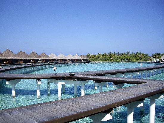 Taj Exotica Resort & Spa: Looking back to the island from the front of the villa