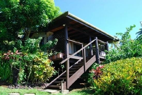 Coconut Grove Beachfront Cottages: Our wonderful Mango Bure! Steps from the sand :)