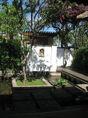 The Samaya Bali Seminyak: 池の模様