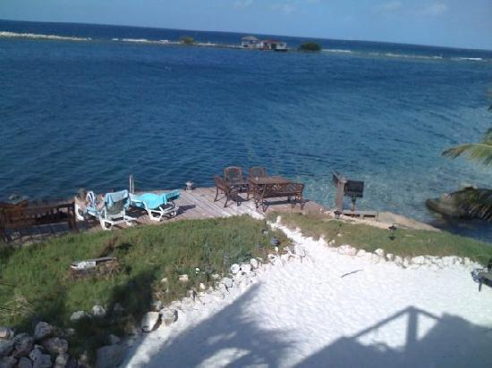 Coral Reef Beach Apartments: View