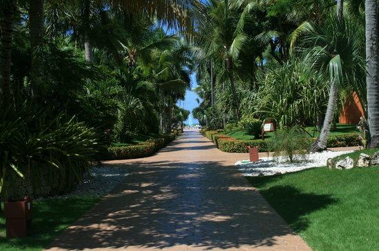 """Iberostar Bavaro Suites: La """"Route des Caraïbes"""""""