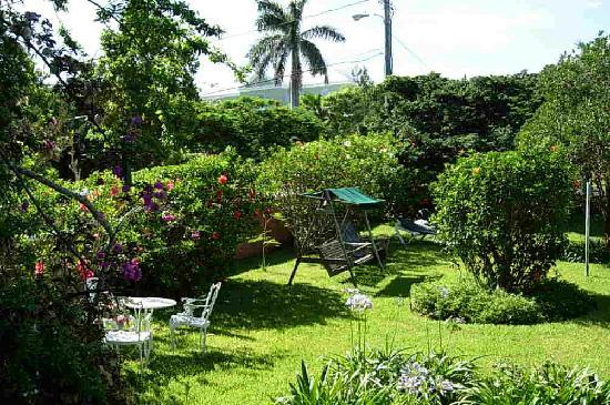 Royal Palms Hotel : Royal Palms grounds