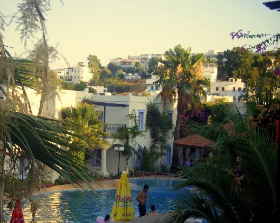 Club Paloma Apartments: view from apartment
