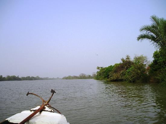 Gambia: Stunning River Trip