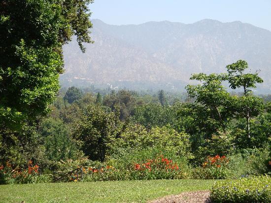 Beautiful Creature Picture Of Los Angeles County Arboretum Botanic Garden Arcadia