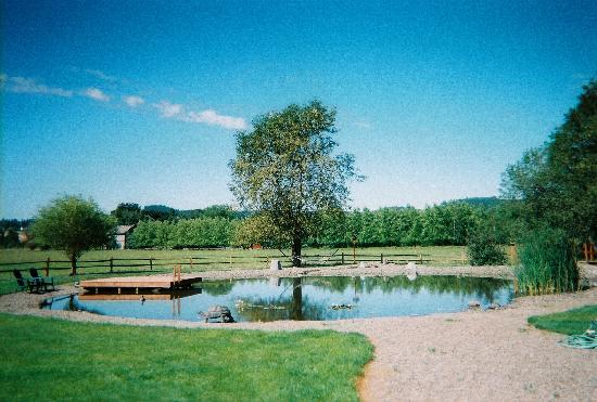 Hopewell Bed & Breakfast: The pond; swimming allowed