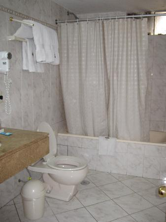 Plaza Mayor Hotel : The large bathroom