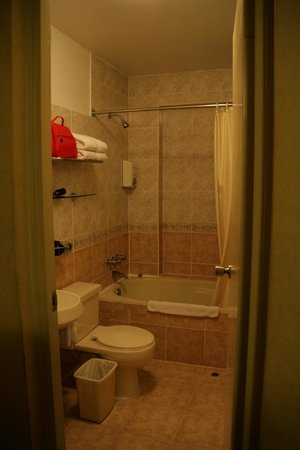Leon de Oro Inn & Suites: Bathroom