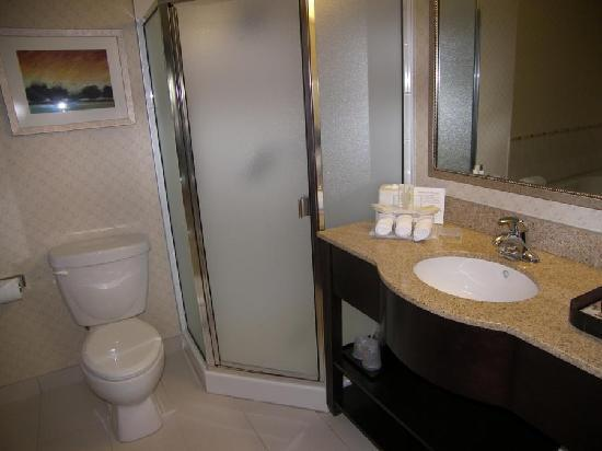 Holiday Inn Express Hotel & Suites Riverport: Stand up shower in the bathroom of the jacuzzi room.