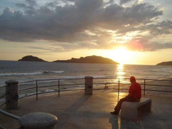 all but that fat guy in the pic looks perfect. i was walking on the Mazatlan beach and saw this