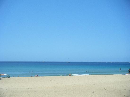 Hanalei Beach 사진