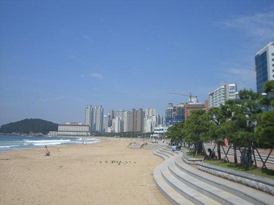 Hotels Near Haeundae Beach Busan