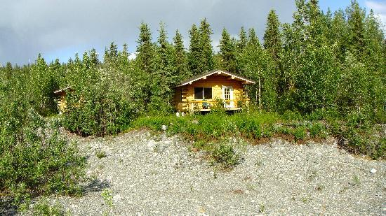 Denali Highway Cabins : Bungalow by the river