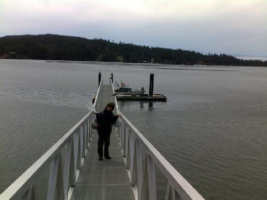 VIP Fishing Charter: boy and dock