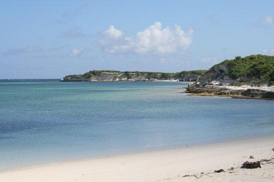 Las Bahamas: Spiaggia rosa