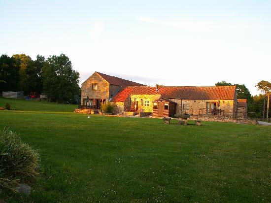Rawcliffe House Farm Holiday Cottages and Studio Rooms: Playground / Picnic Area