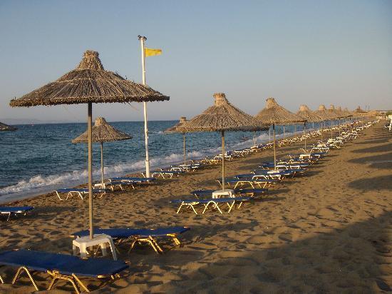 Agapi Beach Hotel: La plage, lors du coucher de soleil