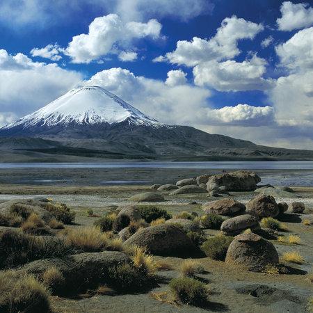 شيلي: AFI