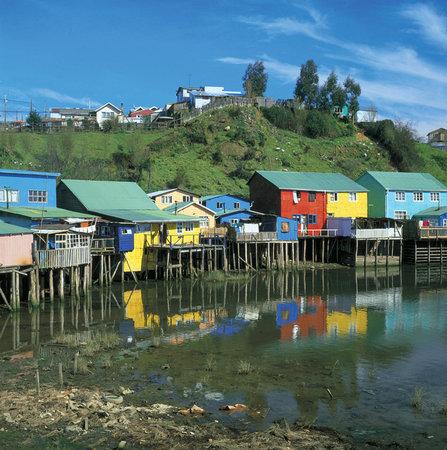 Chili : AFI