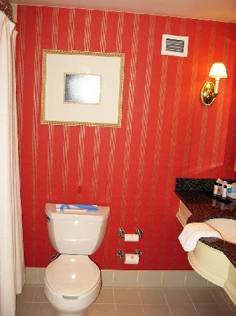 Renaissance Charleston Historic District Hotel: Confortable bathroom, what you'd expect from a Renaissance