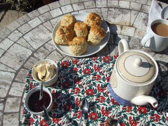 Roundhouse Barn homemade cream tea!