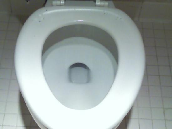 Quality Inn Marietta: Toilet seat