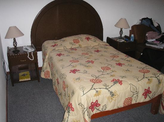 Hotel Tierrasur: The room
