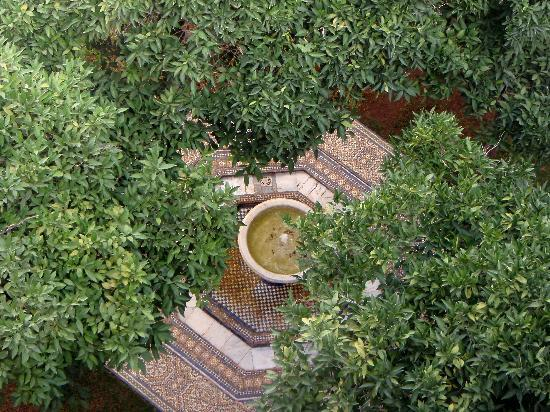 Riad Laaroussa Hotel and Spa: The fountain and its orange trees