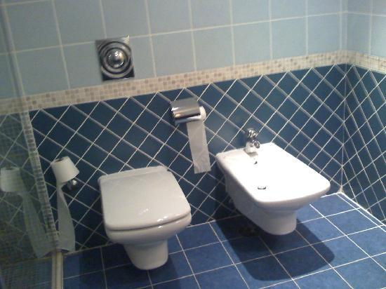Abu Dhabi Airport Hotel: Toilet and bidet