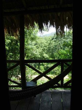 Las Mananitas: Balcony with hammock