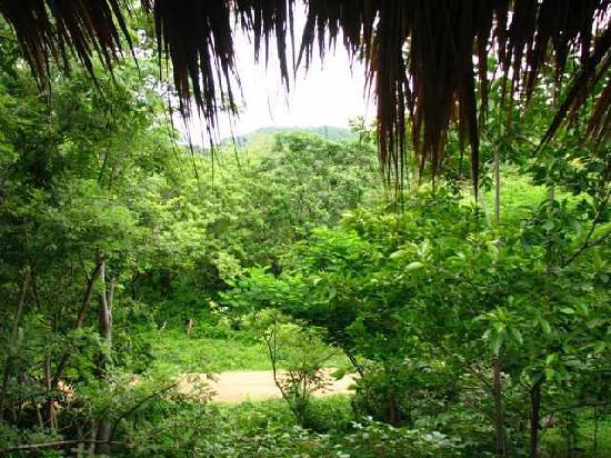Las Mananitas: View