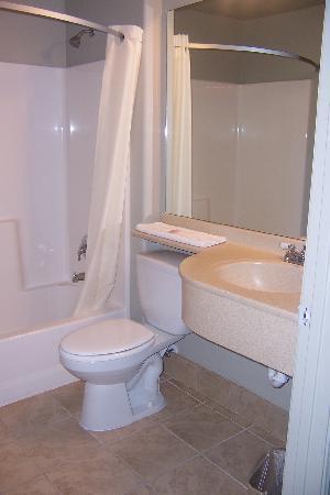 Motel 6 Idaho Falls Snake River : Bathroom