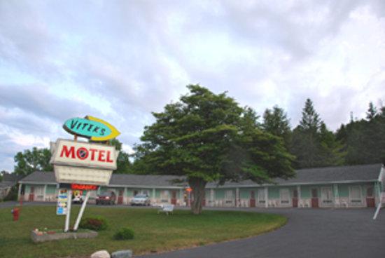Vitek's Motel: Motel view