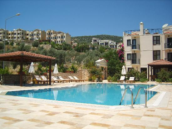 Hotel Asiyan: Quiet pool area