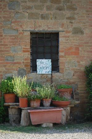 Fattoria Bassetto: Herb Garden