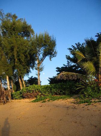 Hale Makai Cottages: Hale Makai Beach