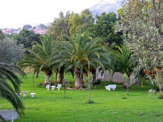 Hotel Hermitage Castellabate: Ein kl. Teil des Hotel Gartens