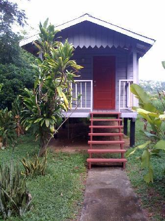 Midas Belize: My cabin at Midas