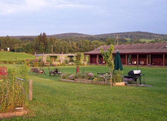 The Meadowlark Inn Cooperstown: Lots of room to roam and play out back