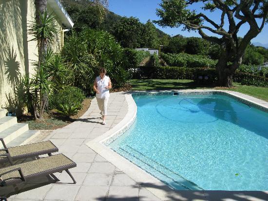 De Wingerd Wijnland Lodge : Nice pool with a great view
