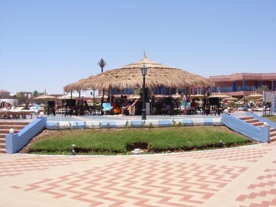 Royal Albatros Moderna Sharm el-Sheikh: pool bar