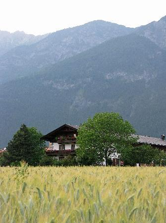 Austria Classic Hotel Heiligkreuz: A view from the back yard of the hotel
