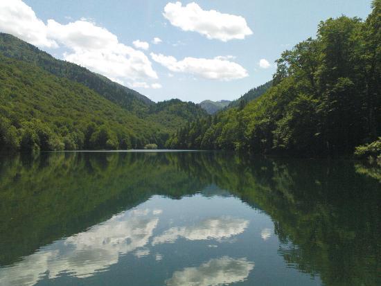 Montenegro: Biogradska Gora N.P.
