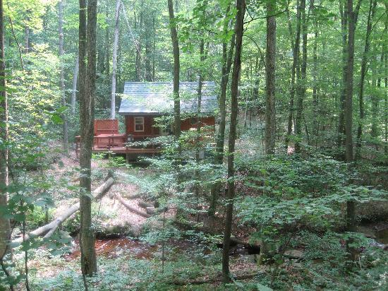 Mountain Creek Cabins : Back on the cabin