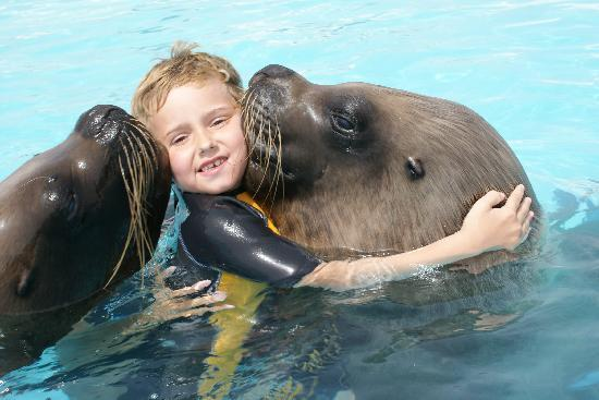 Animal Encounters -  Escape Outdoor & Adventures - Private Tours : Declan and the Bhoys!