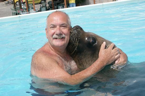 Animal Encounters -  Escape Outdoor & Adventures - Private Tours : Walrus and sealion
