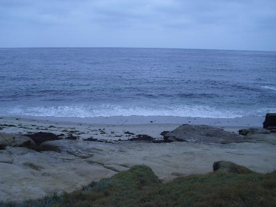 La Jolla Beach Travelodge: Beautiful Windansea Beach