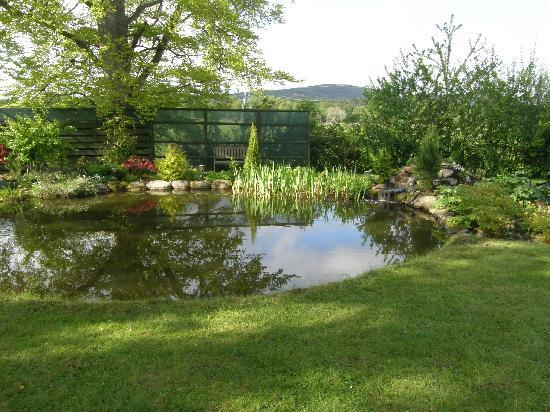 Home Farm Bed & Breakfast: Beautiful gardens with pond