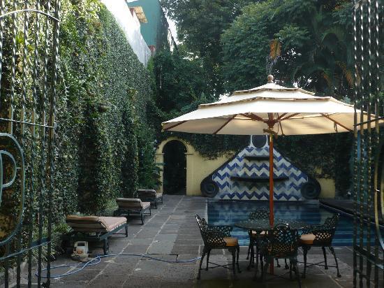 Posada Coatepec : Pool Area