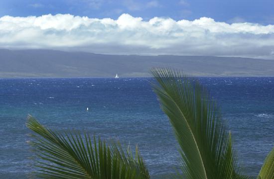 Maui Kai: View from 301 lanai showing bouy where turtes frequent
